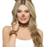 rudolph antlers & nose.
