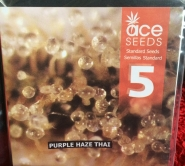 Purple Haze Thai